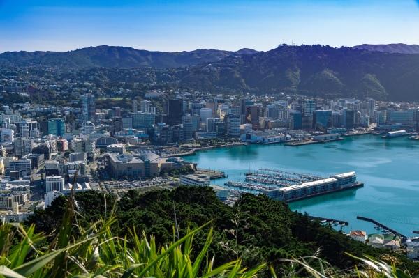 Blick auf Wellington vom Mount Victoria